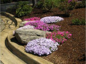 Spring Checklist to Prepare Your Landscape For the New Season
