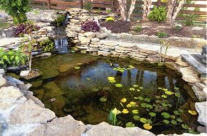 Hardscape Features to Improve the Look of Your Outdoor Landscape