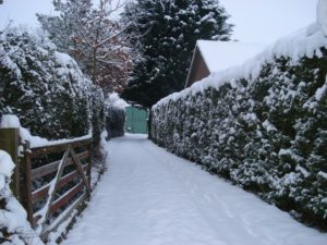 Winter Prep for Your Outdoor Landscape