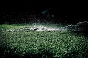Drainage Problems Your Home May Experience, and How You Can Resolve Them