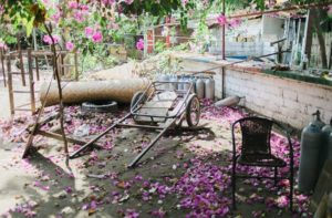 How You Can Ruin Your Home's Curb Appeal